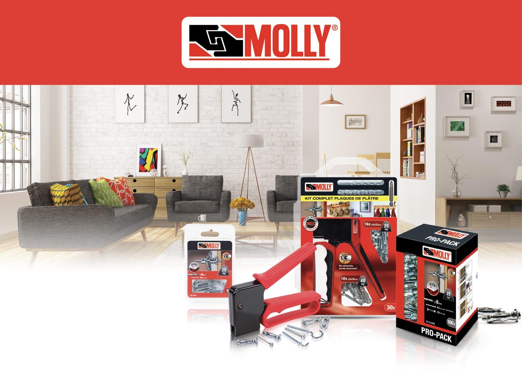 molly-intro